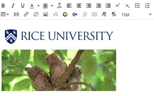 Canvas rich text editor with embedded images of Rice logo and owls.